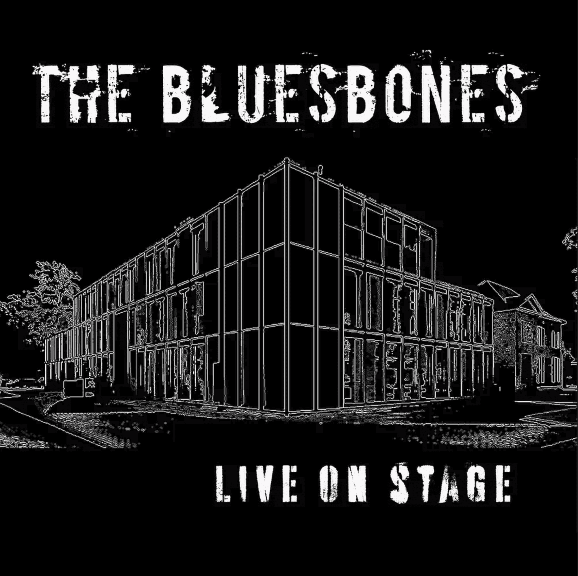 The BluesBones Live On Stage